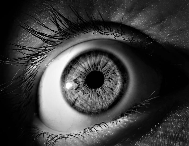 eye-3221498_960_720.jpg