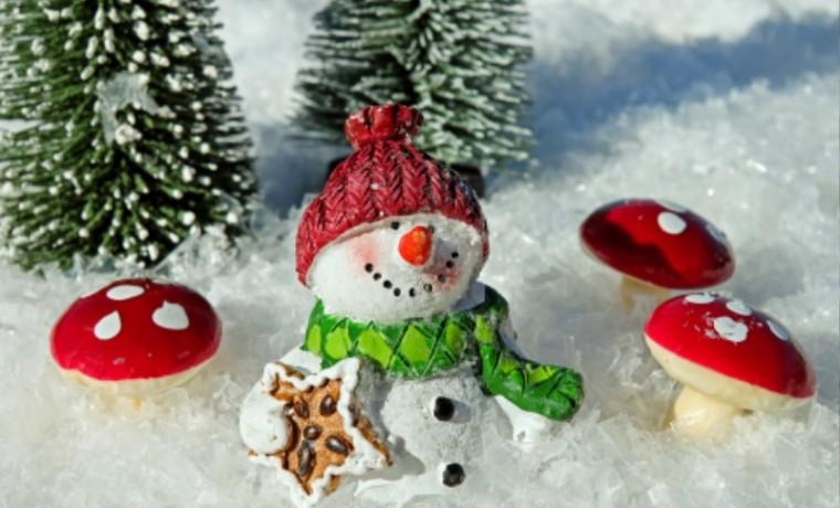 snow-man-2905448_1920.jpg