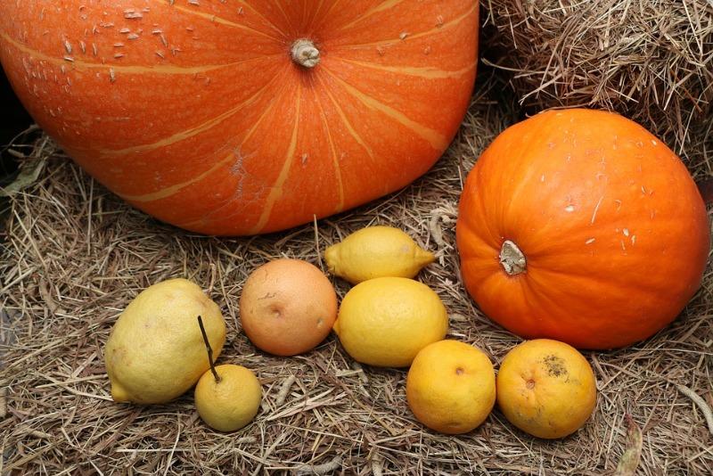 pumpkin-2949055_960_720.jpg