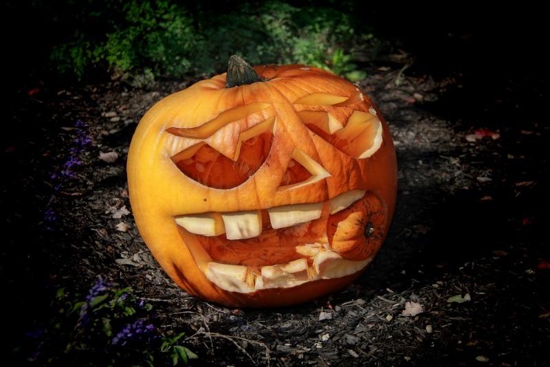 pumpkin-2754001_960_720.jpg